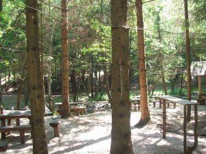 18.picnic-area-1230x923