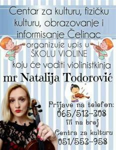skola-violine